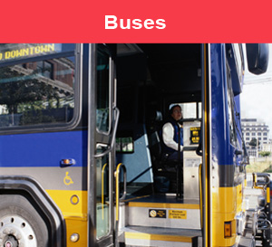 /bus-guides